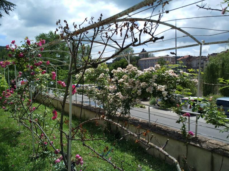 Juin Jardins 02_resize