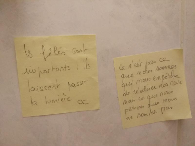 Toilettes du Papillon 18_resize